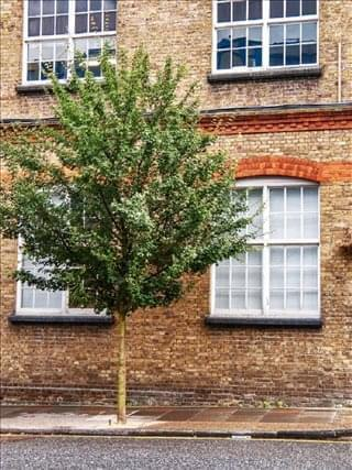 Photo of Office Space on 39 - 41 North Road, Islington - Holloway