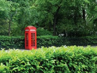 green-london1.jpg